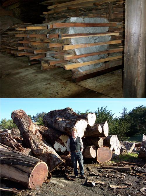 evans-wood.jpg