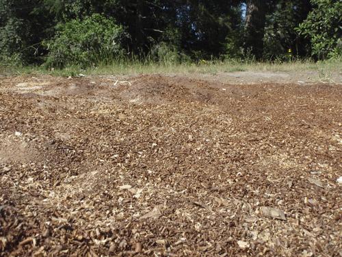 compost-dust.jpg