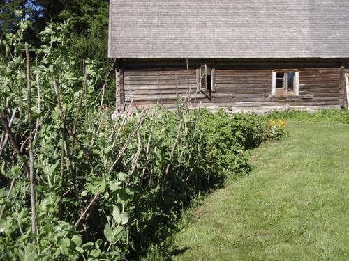eesti-house.jpg