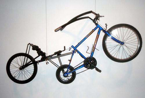 sage's bike