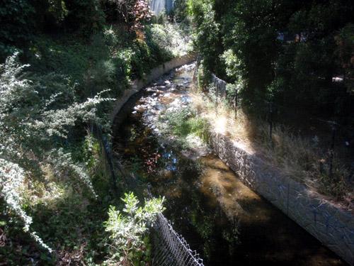 oakland creek1