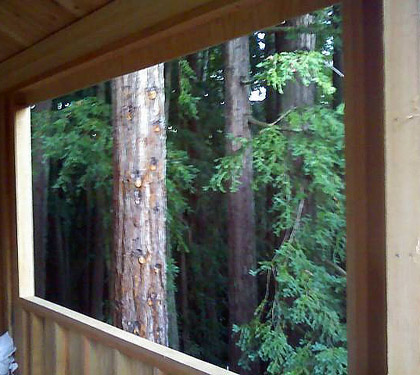 treehouse view