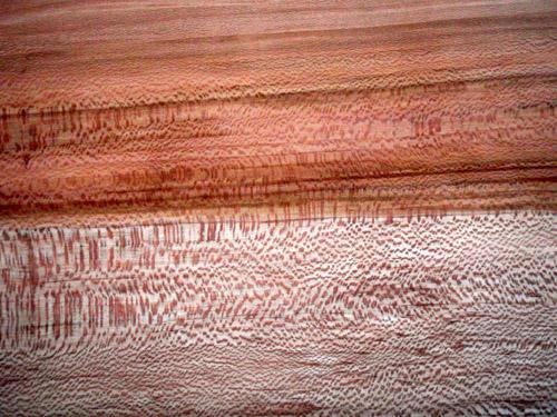 sycamore grain