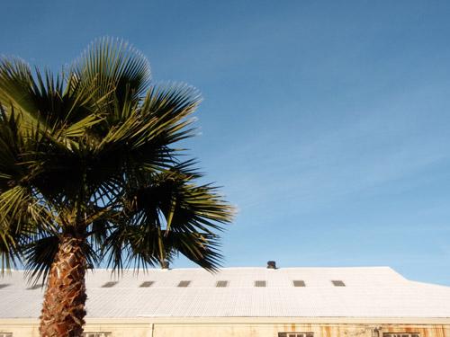 calistoga rooftop2