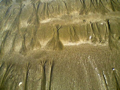 sand pattern64