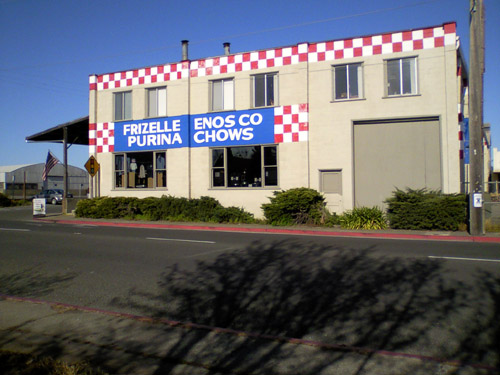 frizelle-enos1