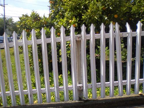 picket fence oakland